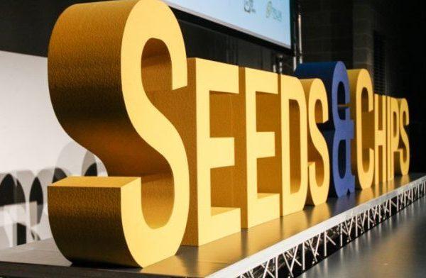 SeedsChips-640x427-640x392